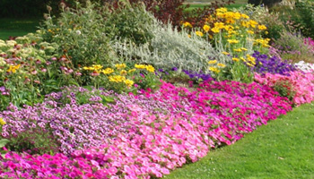 Seasonal flower beds