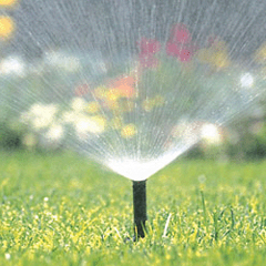 Art Creations Landscape   Irrigation Systems Install and Repair