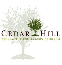 Landscaping Services Cedar Hill TX